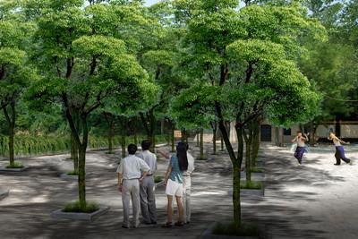 树阵佳境_青岛_工程_v佳境_青岛图集园林设计有限标准建筑设计佳境门广场图片